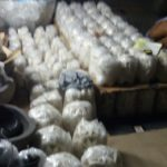 Packing limestone lanterns in Bali for CasaPandan.com.au