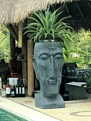 Tall Balinese Head Planter- 100x40x40cmmade from (GRC) a stone composite material. Sturdy in the garden but able to be moved by two people.